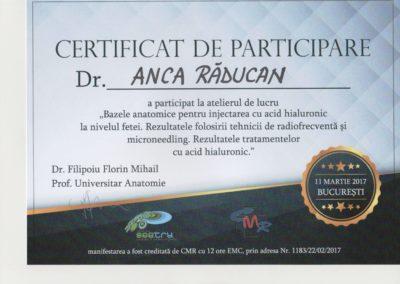 Diploma 2017
